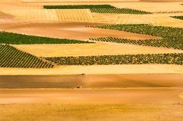Campi - La Mancha - Spagna