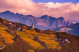 Alba - Alto Adige