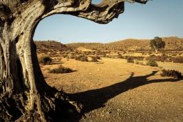 Deserto di Tabernas - Spagna