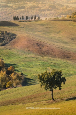 Campagna modenese in autunno
