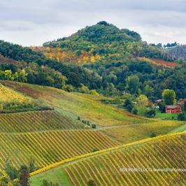 Autunno sulle colline modenesi
