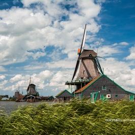 Mulini - Olanda