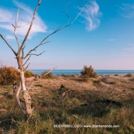 Spiagga della Bassona - Ravenna