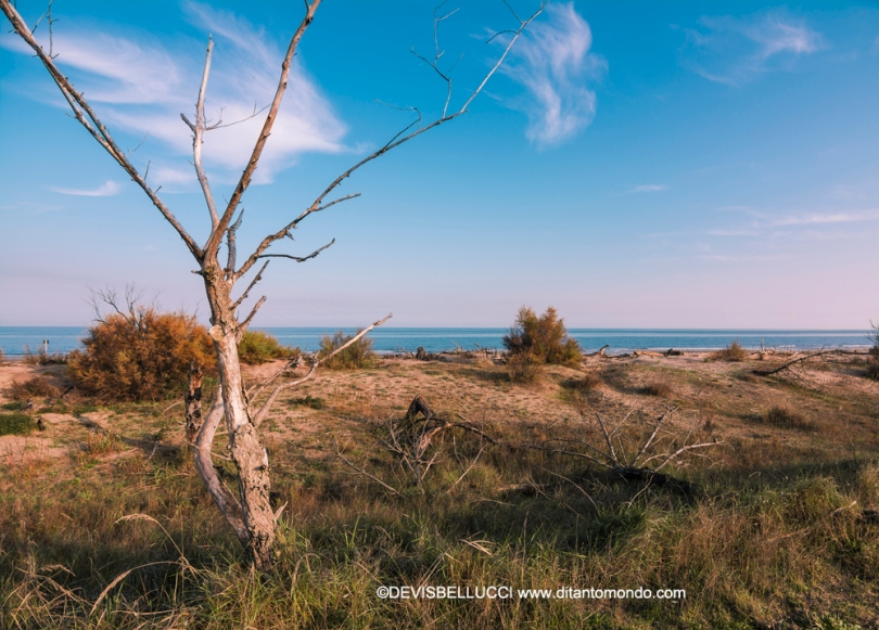 Spiaggia Bassona Nov2016 DSC_4087
